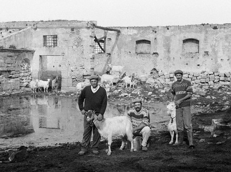 Marsala - Three Shepherds