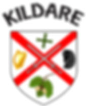 Kildare Crest.jpg
