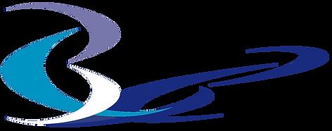 Byzonder C logo excl tekst printscreen 3