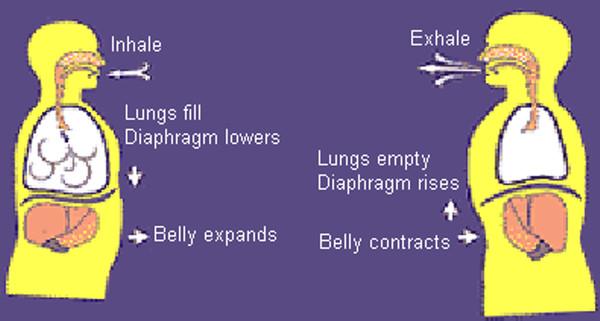 How to breathe properly, according to Brian Mackenzie