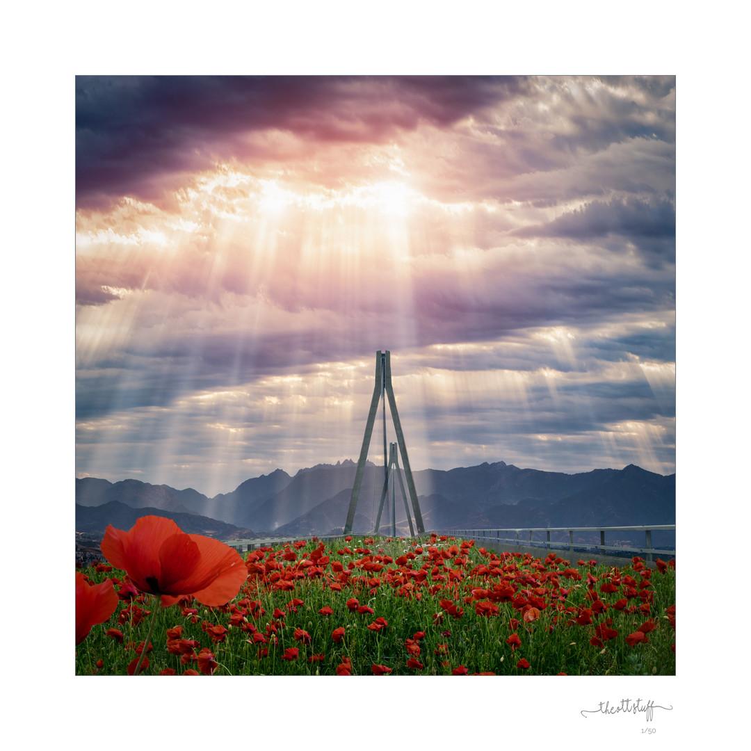 Poppy Bridge