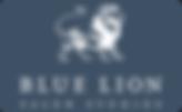 blue lion salon studios lash extensions