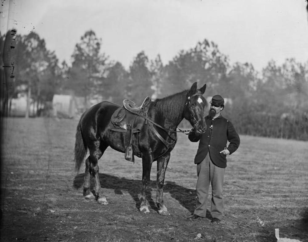 Flint & horse