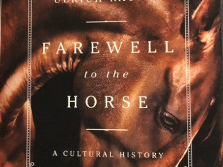 Horses as aristocrats