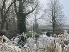 Moat in the winter