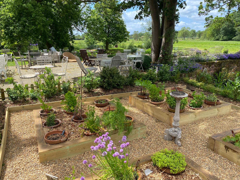 Herb Garden 1.jpg