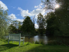 Bench by the moat