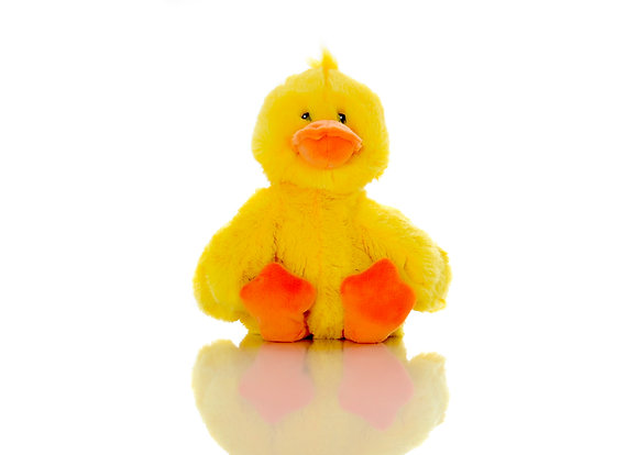 Waddles the Duck