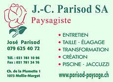 Annonce Parisod demi-page vert pastel.jp