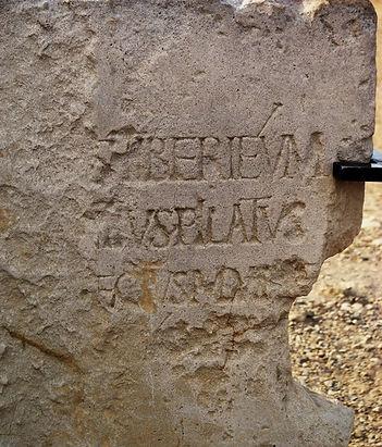 Pilatus Steinweb.JPG