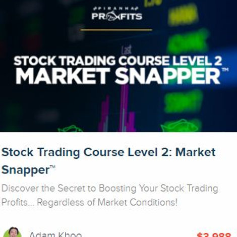 Stock Trading Course Level 2: Market Snapper™ + future Updates