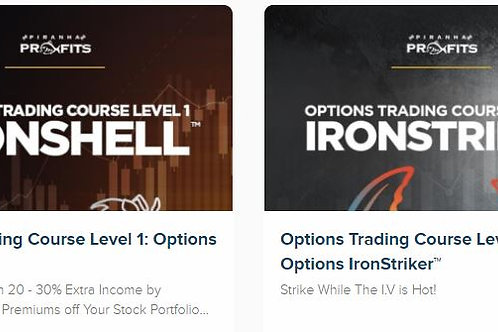 Option lvl 1 and lvl 2 bundle
