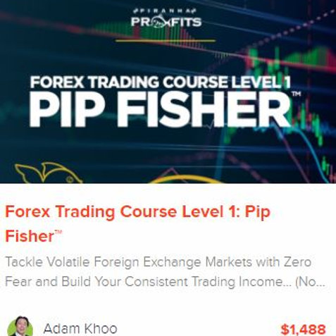 Forex Trading Course Level 1: Pip Fisher™ +future updates