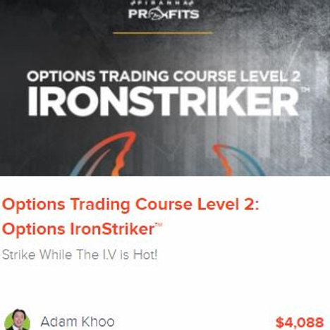 Options Trading Course Level 2: Options Ironstriker™