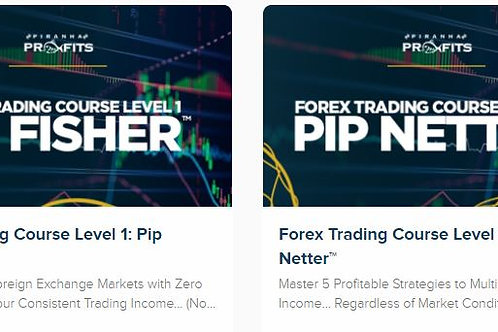 Forex lvl 1 and lvl 2 bundle with future updates and telegram channel