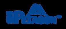 Petagon logo_2017_o-01.png