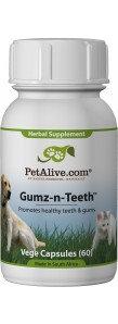 PetAlive Gumz-n-Teeth™