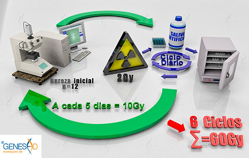 Fluxograma 02 GENESE3D Ilustração 3D