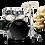 Thumbnail: MAPEX Drumset Tornado (inkl. Zildjian Becken)