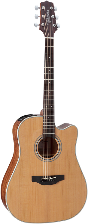 Takamine GD20CENS Dreadnought/C