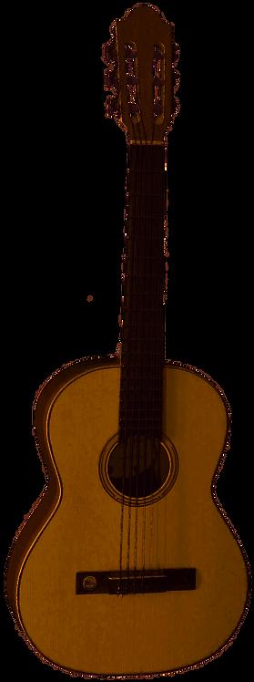 Pro Natura Silver Series Konzertgitarre 3/4 Walnuss