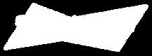 Logo-Bud-em-alta.png