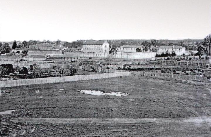asylum view