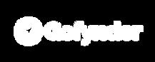 Primary Logo - White - Transparant Arrow