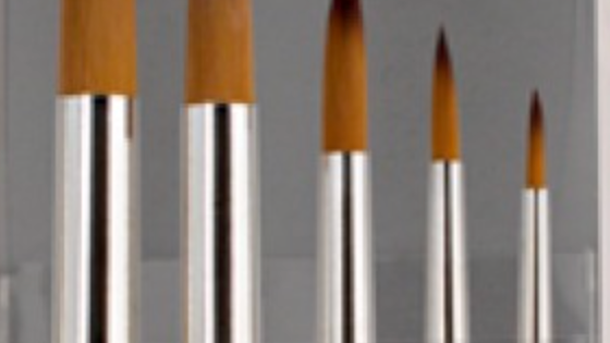 Brushes, Round Set of 5