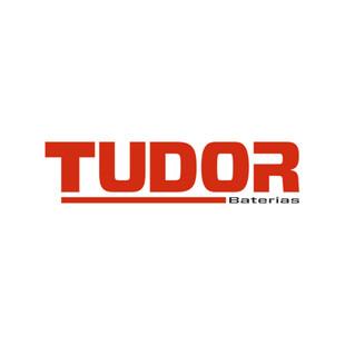 LogoTUDORdef.jpg