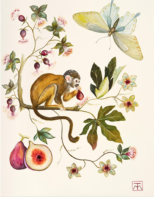 Acuarela Monkey II