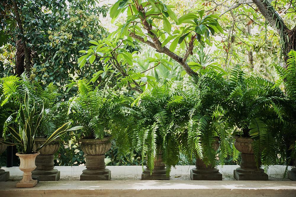 maceteros para plantas