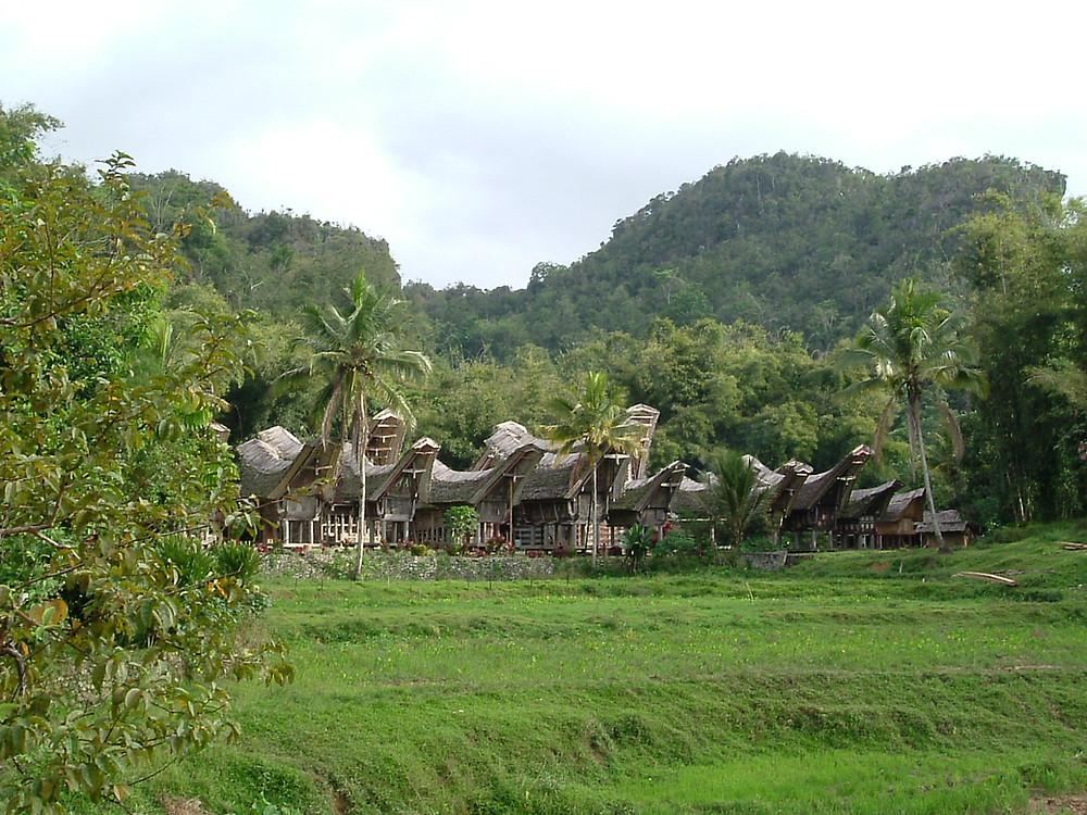 Grupo de casas Tongkonan. Sulawesi
