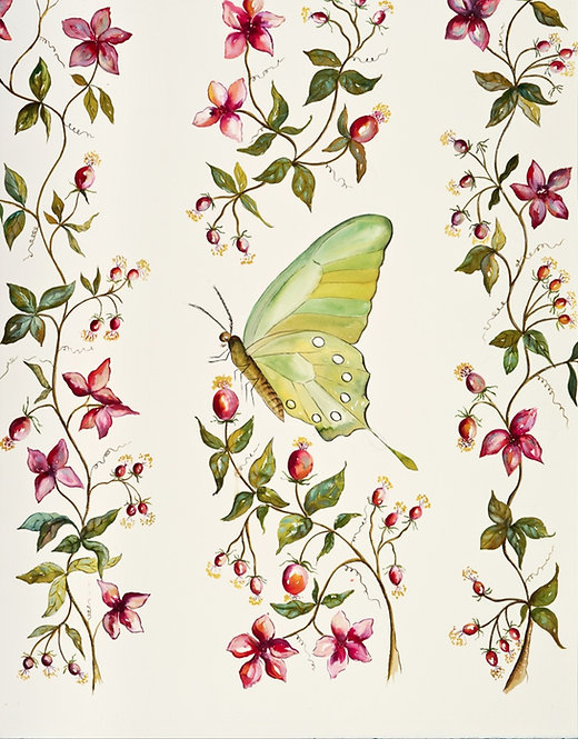 Acuarela butterfly