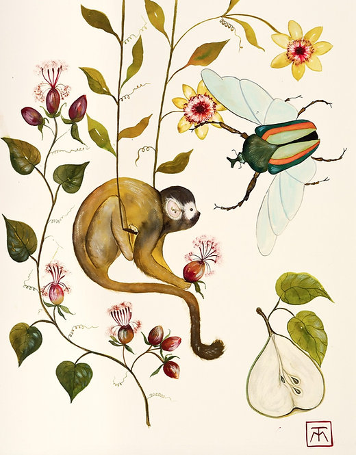 Acuarela Monkey