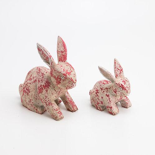 Animales. Conejo. Rojo.