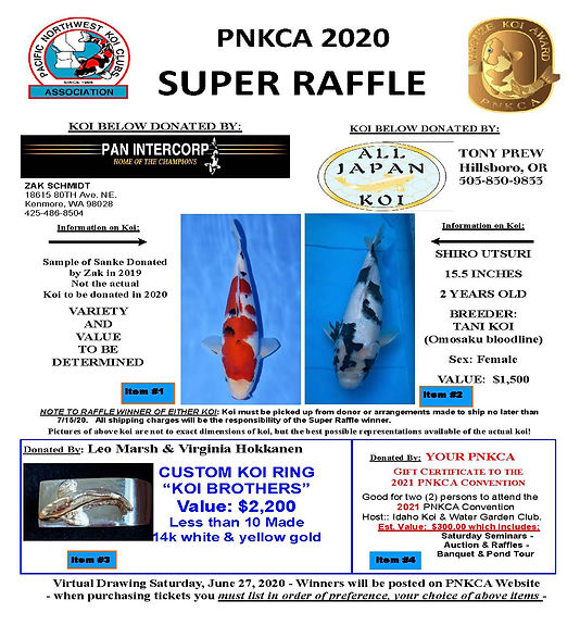 2020 PNKCA Super Raffle Poster FINAL Vir