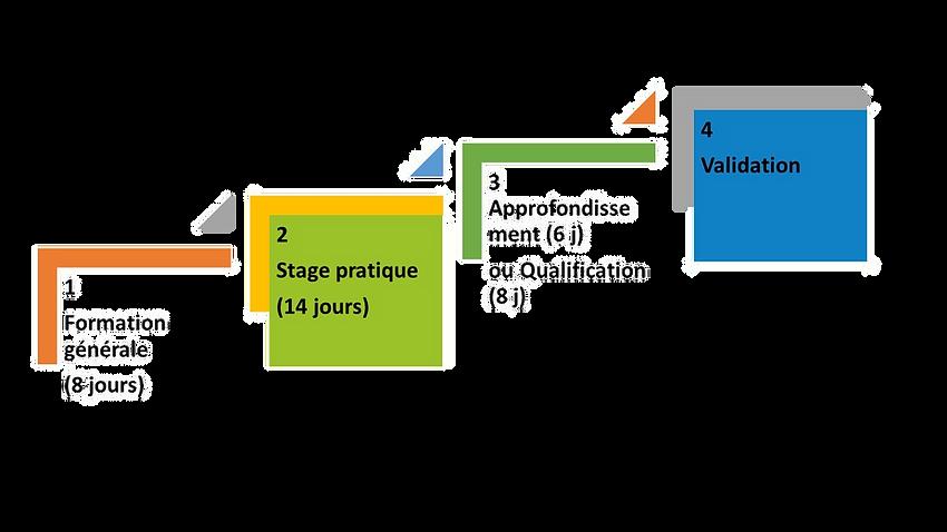 4 étapes du BAFA V2 transp.png