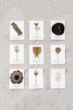 Pressed Floral Escort Cards