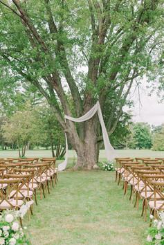 Tree Altar Wedding