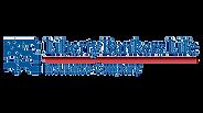5d09488d8876075b985b084b_logo-liberty-ba