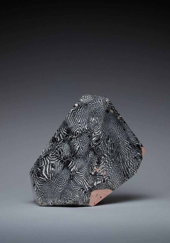 Black Coralscape III