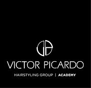 logo vp site_academy.jpg