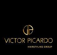 logo vp site_gold2.jpg