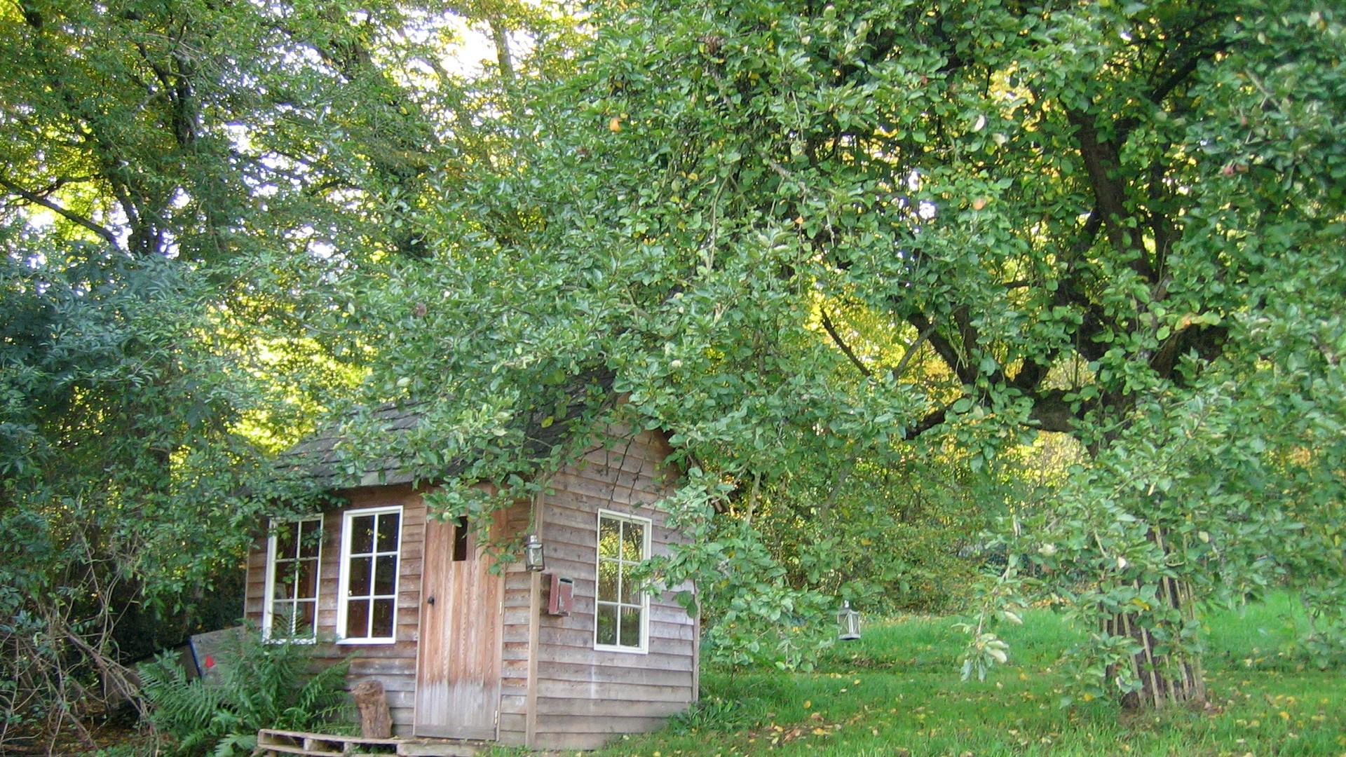 Cabane du jardinier - prairie