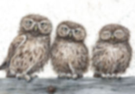 We-Three-Little-Owls.jpg