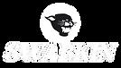 swabkin_logo_v2_transparent.png