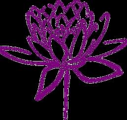 lotus transp.png