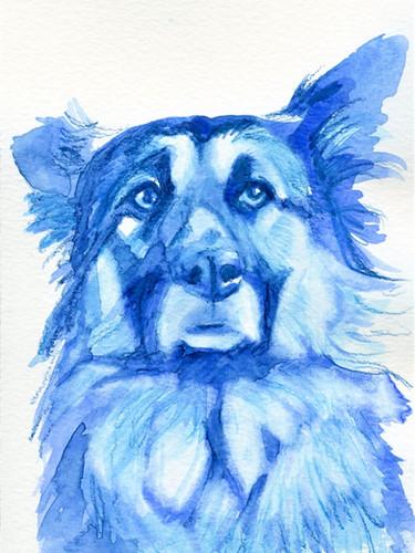 Blue Jude.jpg