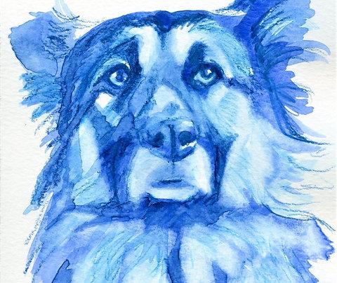 "Small Custom Portrait of Your Pet, Monochrome, 5""x7"""